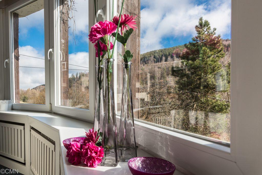 Blumen am Fenster im Pavillion